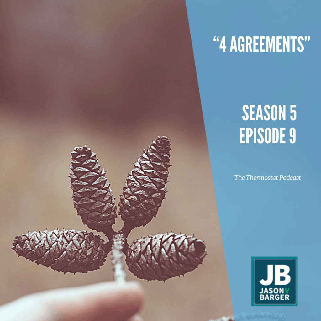 4 Agreements for Leaders, shows a stem with 4 baby pinecones attached.